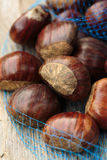 European chestnuts Royalty Free Stock Images
