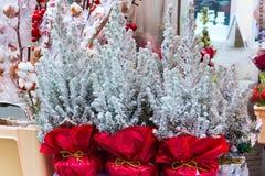 European Christmas trees sale Stock Images