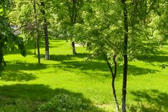European city garden in a summer day. With green fresh grass and beautiful young trees stock photos