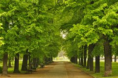 European city park Stock Images