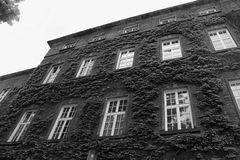 European classic building with squared windows bottom view in black and white. Monochrome. Classical architecture Stock Photo