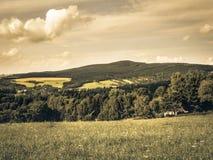 European countryside in summer, aged photo. Middle European countryside, Czech republic, Jeseniky in summer, meadow under the Mala Destna mountain, nostalgic Royalty Free Stock Photos