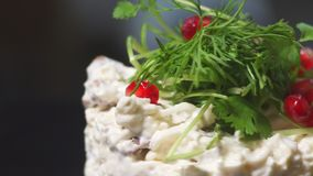 European cuisine. salad with pomegranate closeup. European cuisine. salad with pomegranate stock video footage