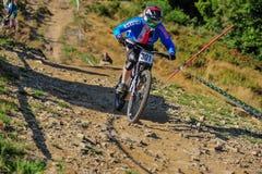 European Downhill Championships Poland,Wisla 2015 Stock Photography