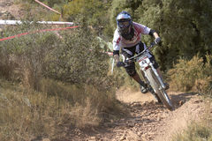 European Downhill Cup Stock Image