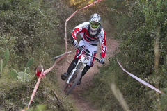 European Downhill Cup Stock Photo