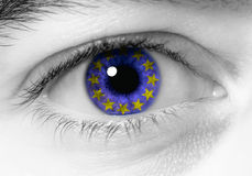 European eye Royalty Free Stock Photos