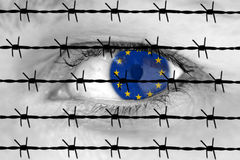 European eye and barbed wire Stock Images