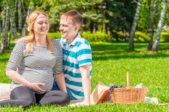European family at a picnic in the park Royalty Free Stock Images