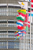 European Flag Languages Stock Images