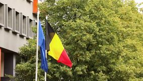 The european flag and the national german flag of germany with trees and building in the background, dutch and european. The european flag and the national stock video