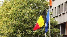 The european flag and the national german flag of germany with trees and building in the background, dutch and european. The european flag and the national stock video footage