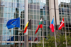 European flags , Brussels Stock Image