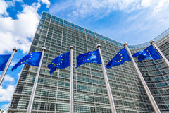 European flags  in Brussels Stock Images