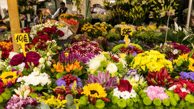 European flower market Royalty Free Stock Photo