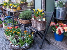 Flower Shop II Royalty Free Stock Photos