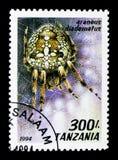 European Garden Spider (Araneus diadematus), Arachnids serie, ci. MOSCOW, RUSSIA - MARCH 18, 2018: A stamp printed in Tanzania shows European Garden Spider ( Royalty Free Stock Photos