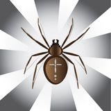 European garden spider vector illustration Stock Photography