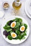European green mix salad Stock Photos