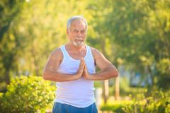Grey Bearded Old Man in White Vest Shows Yoga in Park. European grey bearded old man in white vest blue shorts does morning exercises shows yoga pose in tropical Royalty Free Stock Image