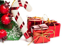 European holly with candy cane Stock Images
