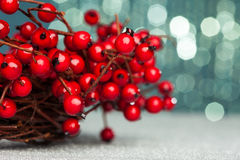 European holly on red background Royalty Free Stock Photo