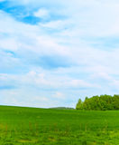 European landscape. Landscape - a field and wood on horizon Royalty Free Stock Photos
