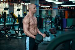 Handsome man make exercise for biceps with the dumbbells. stock images