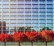 European Parliament in Strasbourg, autumnal view with red trees. France Royalty Free Stock Photography