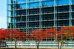 European Parliament in Strasbourg, autumnal view with red trees. France Royalty Free Stock Images