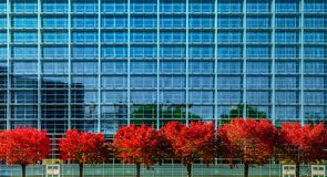 European Parliament in Strasbourg, autumnal view with red trees. France Stock Image
