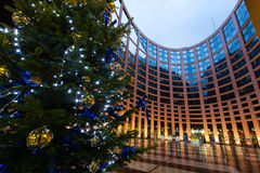 The European Parliament Strasbourg. In night,Christmas tree royalty free stock photo