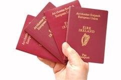 European Passports. Four European Passports isolated on a white background royalty free stock photo