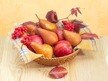 European pears and apples on checkered napkin in wicker basket Stock Images