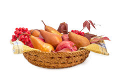 European pears and apples on checkered napkin in wicker basket Royalty Free Stock Image