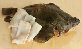 European plaice Stock Photo