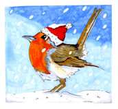 European Robin with Christmas hat Royalty Free Stock Photos