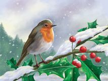 European robin perched on a branch in a snowy landscape. Digital painting vector illustration