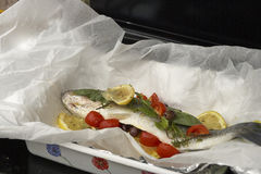 European sea bass ready for cooking Royalty Free Stock Image