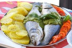 European seabass branzino basil sauce recipe closeup Royalty Free Stock Image