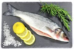 European seabass. Ready to cook Stock Photography