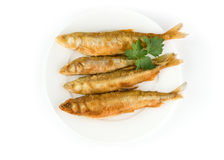 European smelt Royalty Free Stock Photography