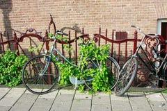 European-style bikes Royalty Free Stock Photos