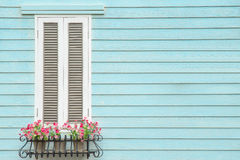 European style window and flower pot Stock Photography