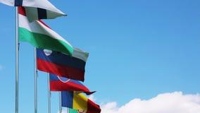 European Union countries flags waving stock video