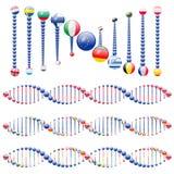 European union DNA Stock Photo