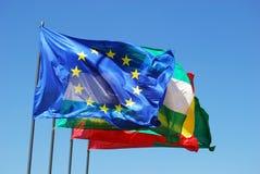 European Union flag. Royalty Free Stock Photos