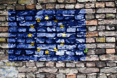 European Union flag painted on old brick wall. Flag of the European Union painted on an old brick wall with small ivy plant growing out of a crack stock images
