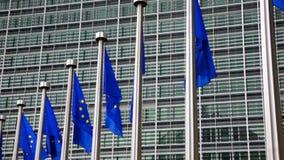 European Union flags against European Parliament building stock video footage
