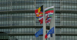 European Union Flags and France flag stock video footage